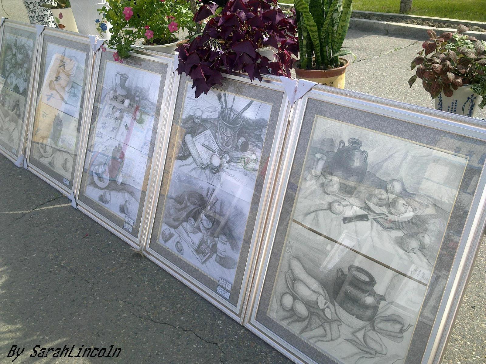 这是素描-异想世界 庆 五 四 花卉书画展小记 二