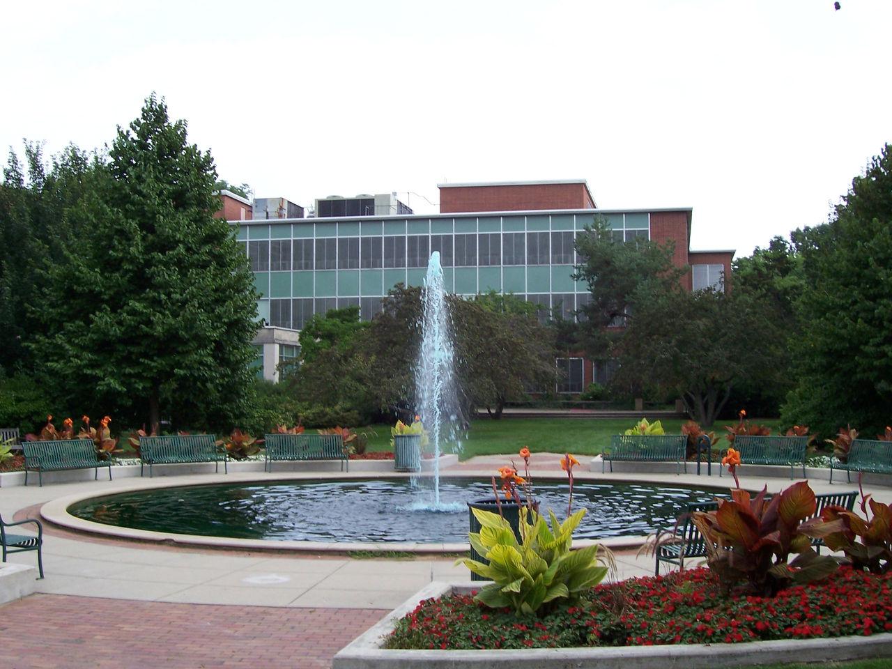 共计约有一万六签名的学生居住于密歇根州立的二十三栋大学生宿舍图片