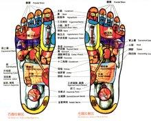 足疗的足部图册