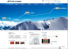 中国五百强企业网站欣赏