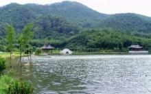 东莞生态园
