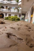 中心幼儿园淤泥厚厚一层