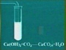氫氧化鈣和二氧化碳反應