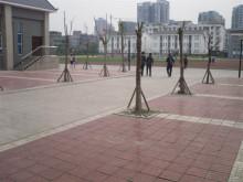 绵阳市实验中学城北校区