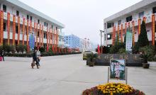 湖岭镇中学