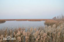 黑龙江明水国家级自然保护区