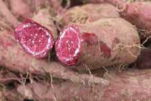 紫薯的图片