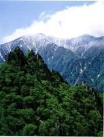日本神山关夜gv资源