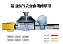 管道燃气自闭阀原理图图片