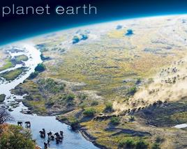 地球脉动百度网盘