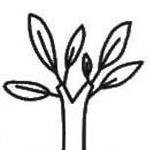 树木简笔画的几种常见画法