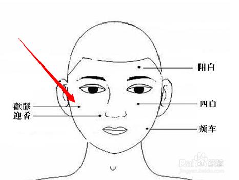 色咪网老穴人体_颧髎穴属于手太阳小肠经,颧髎穴位于人体面部,当目外眦直下,颧骨下缘