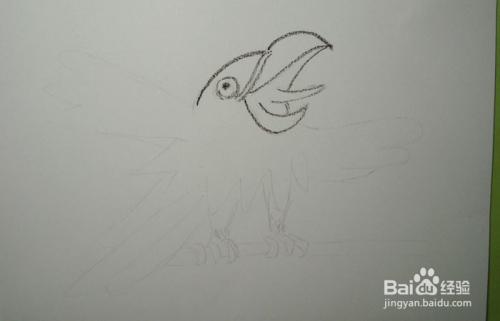 儿童蜡笔画之爱学习的小鹦鹉