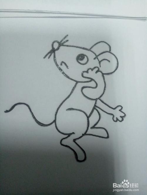 教你画一只回头小老鼠的简笔画图片