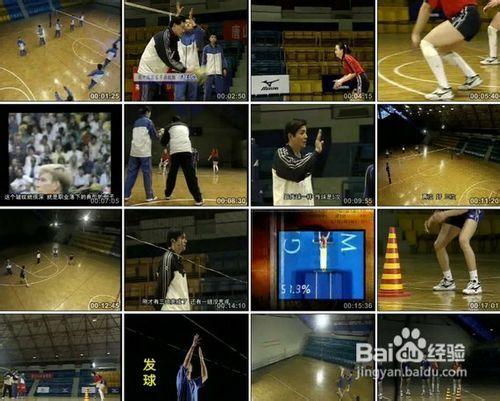 排球发球种类及动作要领   排球扣球动作要领   排球垫球
