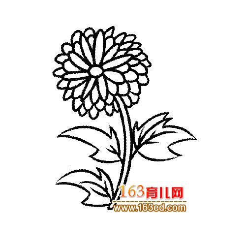 卡通简笔画图片 大全 一件花 衣服 5068儿童网 花卉简笔画 一朵玫瑰3