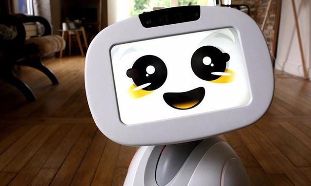 buddy就是家庭机器人的未来吗?