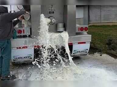 美数十万加仑牛奶倒入下水道