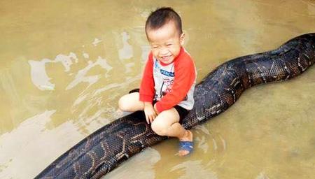 越南小孩子把蛇当马骑