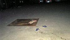 监拍男子广场纳凉 睡梦中被轿车碾压致死