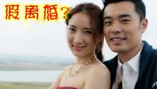 陈赫离婚七大狗血事件