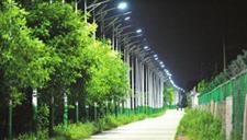 西安一村道4公里装700盏路灯 最小间距不足5米
