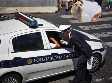 国外一男子追不上狗,报警让警车追