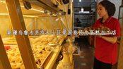 新疆最好吃最特别的糕点加工商,维吾尔族特色糕点
