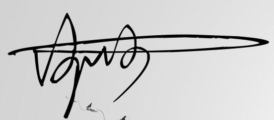 刘佳二字的艺术签名