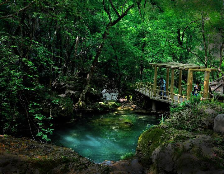 武汉到大口森林公园