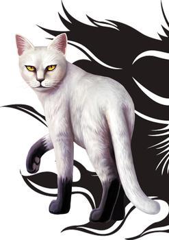猫武士 猫武士火星 猫武士图片大全图片