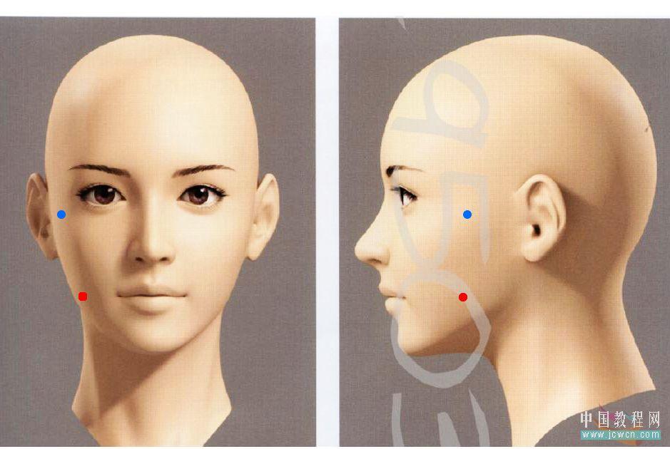 3dmax人物头部模型下载图片