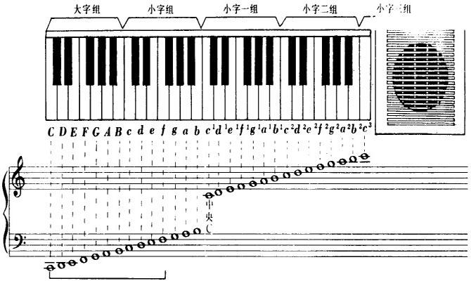 电子琴中37键44键的键只的是什么?另外什么牌子的质量图片