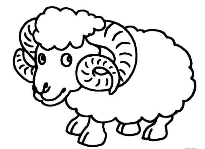 可爱卡通绵羊简笔画