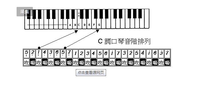 28孔24孔口琴练习方法图片