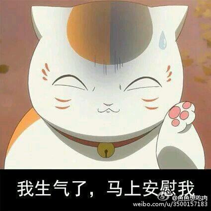 求金馆长 猥琐猫 兔斯基 天线宝宝 金毛等搞笑呆萌表情图片