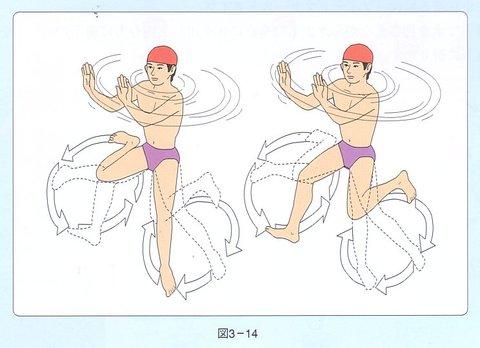蛙泳技术要领中,先伸胳膊还是先蹬腿?图片