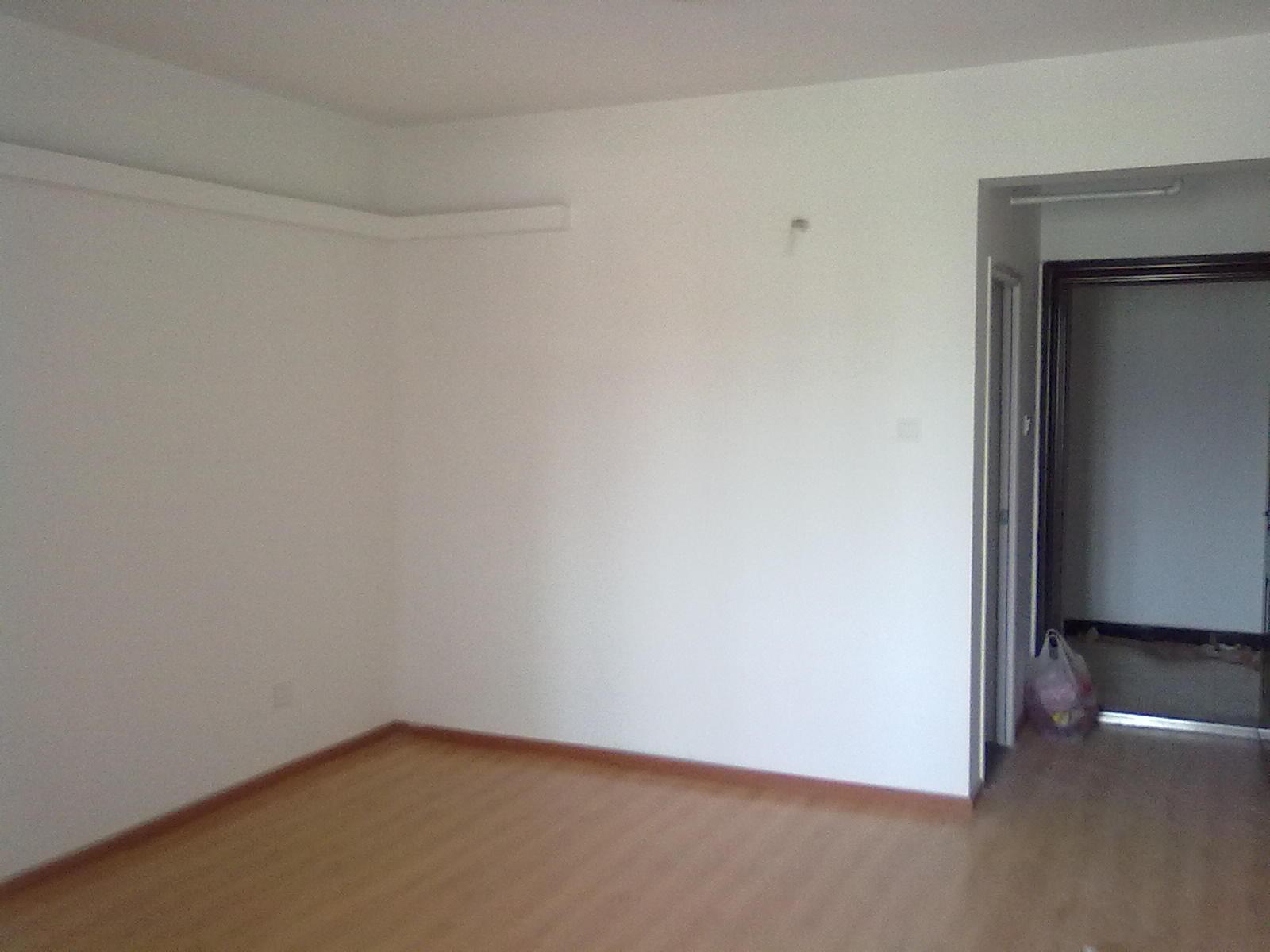 2008-03-19 武汉租房(单间)哪里房租低点?图片
