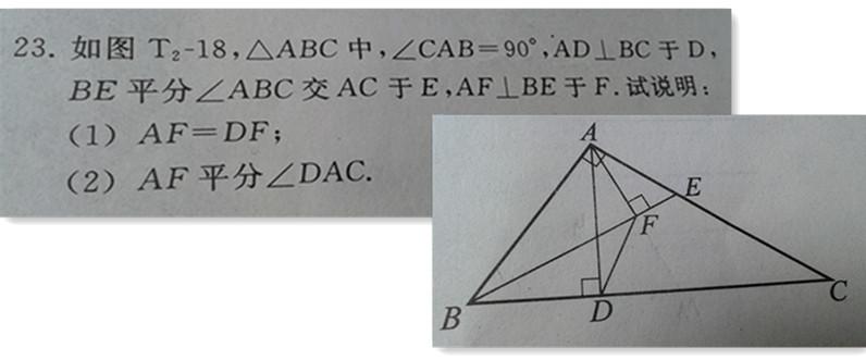 七年级数学几何题 一道图片