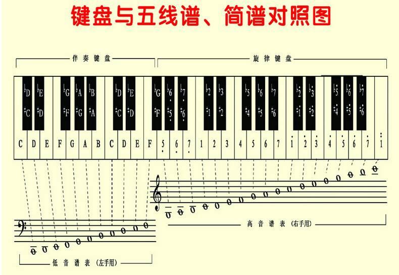 电子琴和真正的钢琴键位都是一样的吧?图片