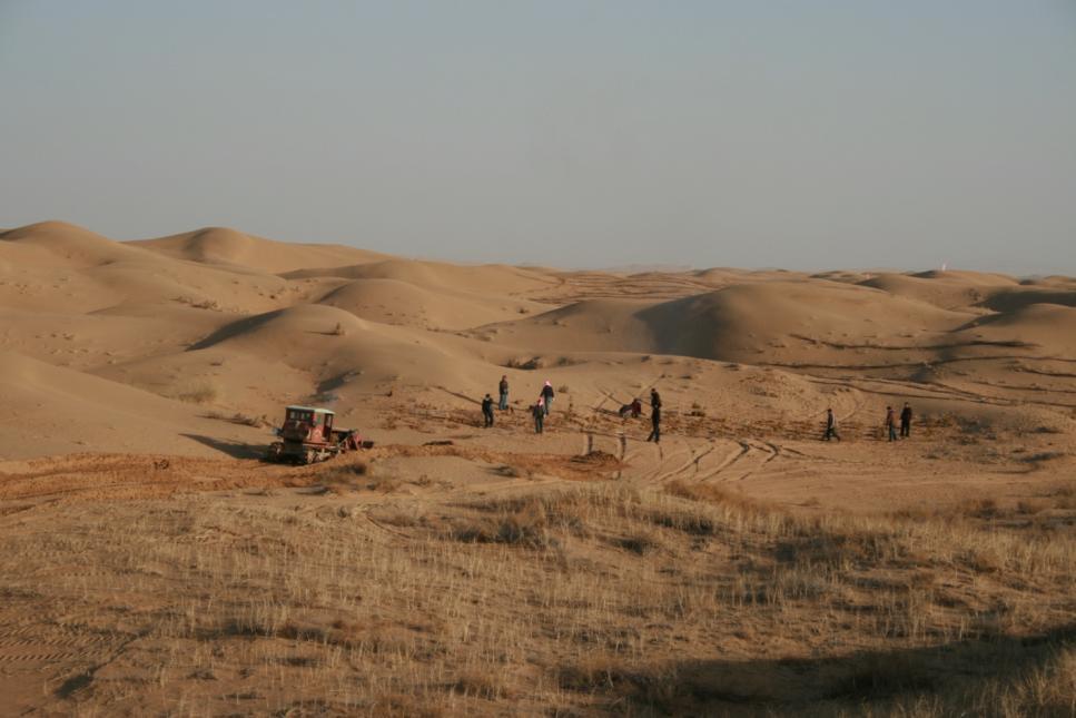 中国土地沙漠化的现状是怎样的