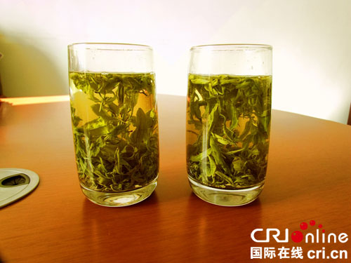 珍藏黄金芽茶叶多少钱