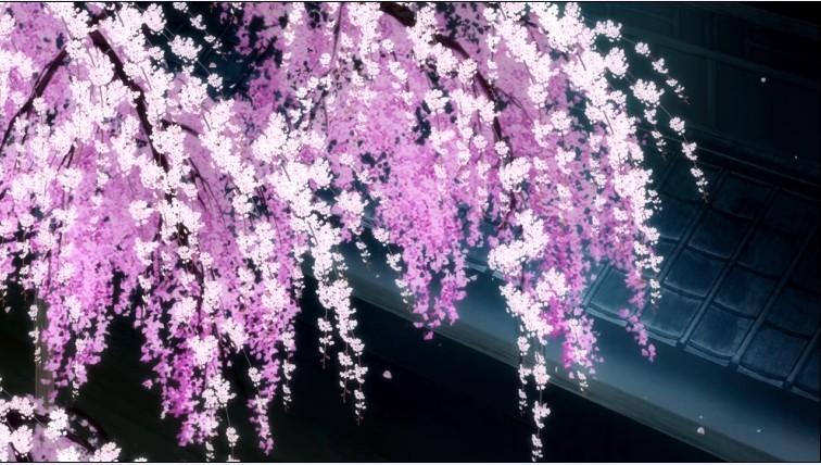 动漫樱花图片