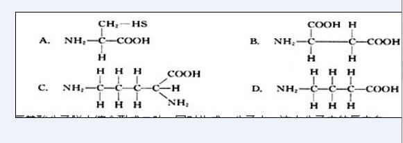 一道氨基酸分子结构通式 题图片