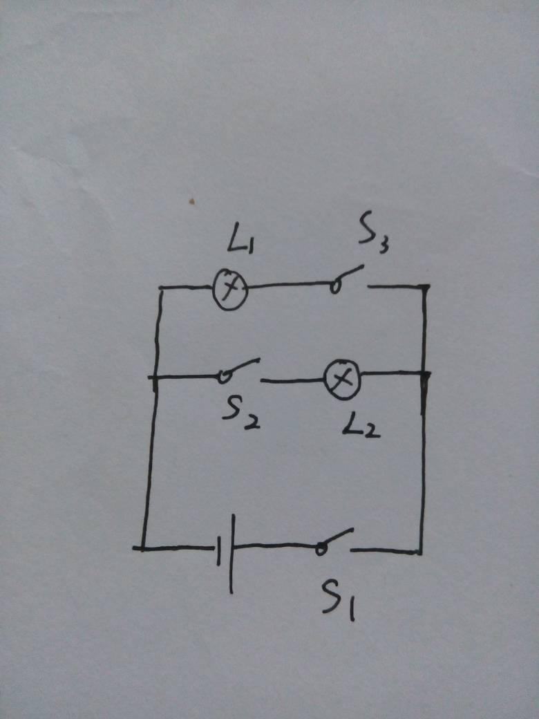 物理题,实物图画电路图.图片