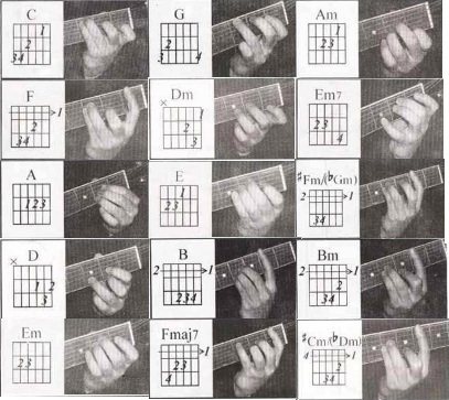桌面吉他常用和弦指法图 乌克丽丽和弦指法图 吉他扫弦指法图