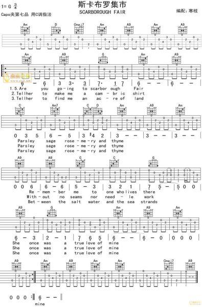 有谁知道莎拉布莱曼的《斯卡布罗集市》(又名:月光女神)的吉他谱?图片