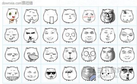 求猥琐猫qq表情包发我图片