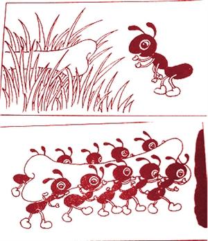 帮忙看图写话 蚂蚁搬骨头