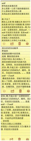 wolf中文版歌词太乱了想记下来